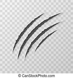 Claws Animal Scratches Isolated On Transparent Background....
