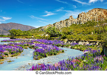 Landscape with colorful flowers, Clay Cliffs, New Zealand