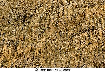 Clay Rock Walll