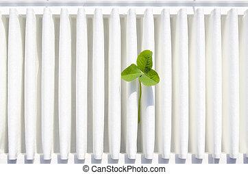 clean air concept - fresh green clover on the clean vehicle ...