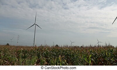 Clean and Renewable Energy, Wind Power