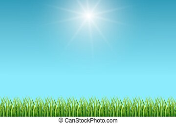 Clean blue sky and green grass vector background