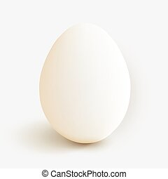 Clean egg isolated od white. Vector illustration