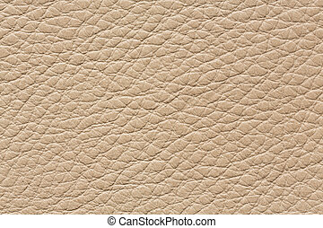 Clean leather texture in classic light colour.