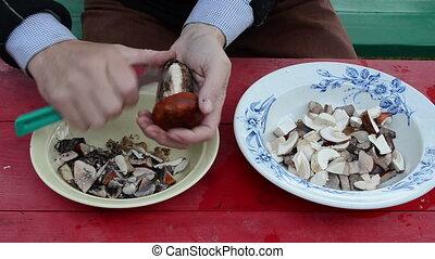 clean orange-cap mushroom