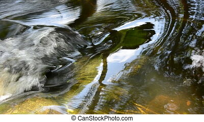 clean summer river stream