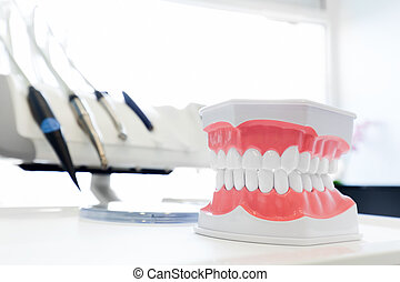 Clean teeth denture, dental jaw model in dentist's office....