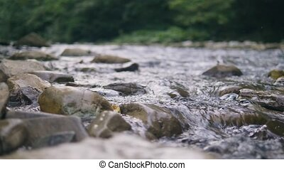 Clean water flowing in stony river close up. Stream of water...