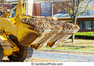 Cleaning fallen autumn leaves with on excavator and a truck in the city