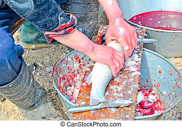 cleaning fish 3