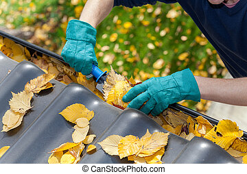 Cleaning gutters from leaves - A man taking autumn leaves ...