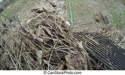 Cleaning leaves - Camera attached to panicle and cleaning...