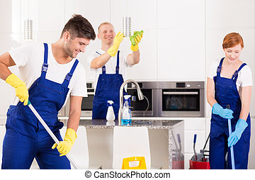 Cleaning of modern kitchen