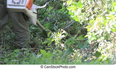 cleaning scrubland - man cleaning scrubland