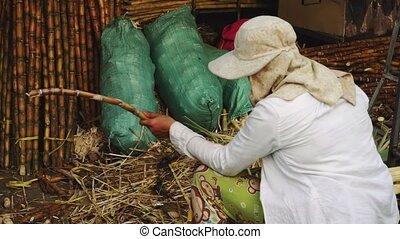 Cleaning the sugar rope Cambodia, Phnom Penh