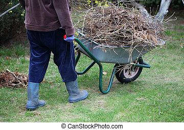 Cleaning up garden using wheelbarrow - Gardener removes pile...