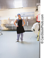 Cleaning woman standing in kitchen