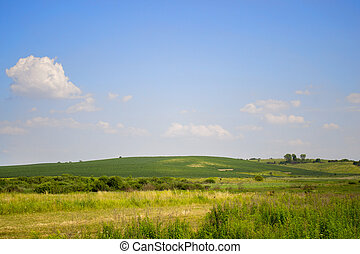clear blue sky with small white clouds and green field in summer
