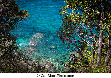 Clear blue waters of ocean and lush greenery in Abel Tasman National Park, New Zealand