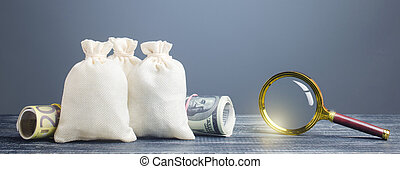 Clear money bags and magnifying glass. Financial monitoring ...