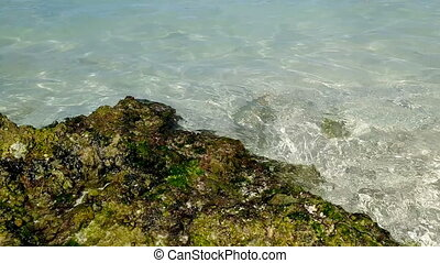 Ocean coast - clear ocean water, sandy beach. Ocean coast