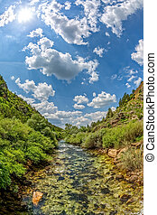 Clear stream in springtime - Vertical fisheye shot of the...