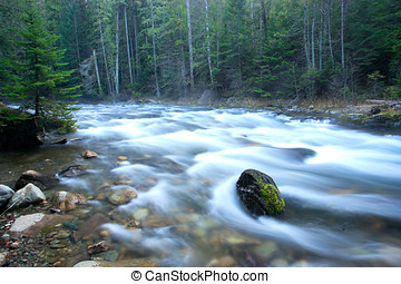 Clear swift stream. - A swift river in Washington state near...