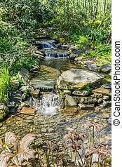 Clear Water Creek 2