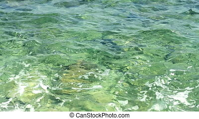 clear water of the sea