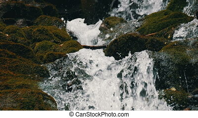 Clear water quickly fall downhill flowing around dark wet stones with moss in the Carpathian mountains.