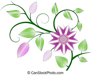 Clematis background - Beautiful abstract pink clematis...