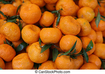 Clementine crop - A crop of clementine oranges.