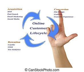cliente, lifecycle, en línea