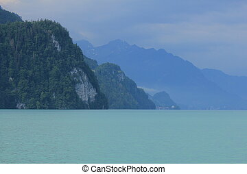 Cliff at the shore of Lake Brienz on a rainy summer day.