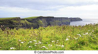 Cliffs of Moher and Atlantic Ocean. Most famous landmark in...