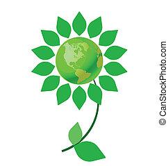 climat, fleur, changement