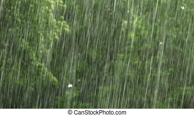Climate change, close up shoot of rain during a severe thunderstorm, France