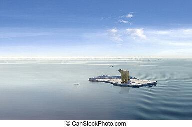 Climate Change - Polar bear on an ice floe