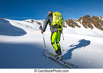 Climb with skis and seal skins in virgin snow