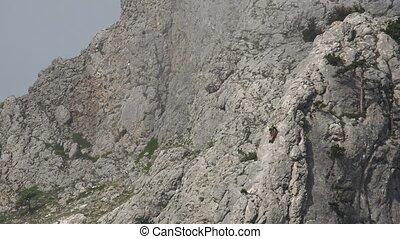 Climber on a rock.