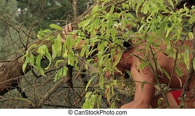 Climbing between branches - Man in the wild coming forth...