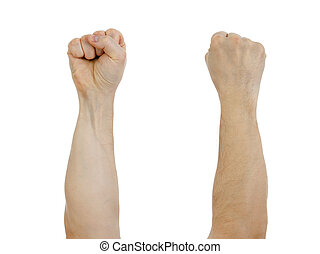 clinched fist raised up  isolated on white