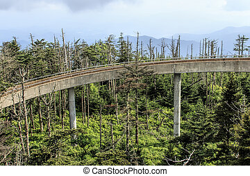 Clingmans Dome observation tower - Ramp to the observation...