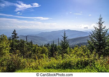 Clingmans Dome Overlook - View from the summit of Clingmans...