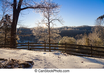 Morning after an ice storm in Clinton, Tennessee