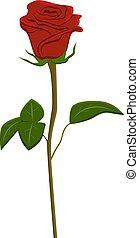 Clip art red rose