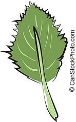 Clipart of an ovate green leaf with a margin and alternate venation vector or color illustration