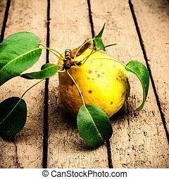 clo, 古い, 木製である, 葉, ナシ, 黄色緑, 背景, 新たに