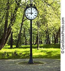 Clock in green park