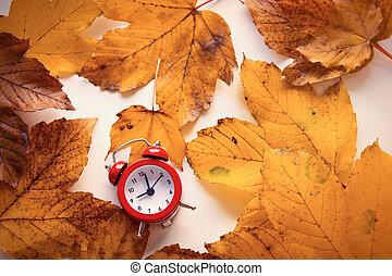 clock on autumn maple leaves